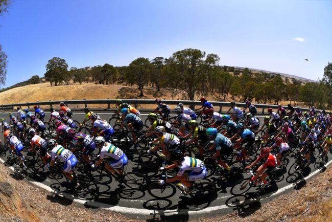 maglie e salopette ciclismo UCI